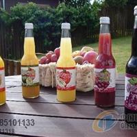 各种果汁瓶饮料瓶+瓶盖