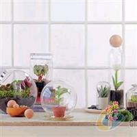 供应玻璃工艺装饰品/家居玻璃