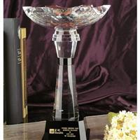 企业年终盛典大会颁发水晶奖杯