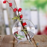 玻璃水培挂件玻璃苔藓瓶定做