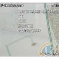 12mm窗用自洁净玻璃
