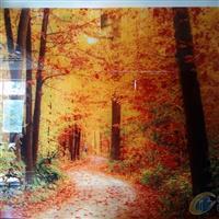 数码彩釉玻璃电视背景墙