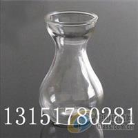 水培玻璃瓶风信子
