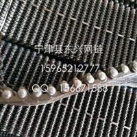 山东东兴供应输瓶机专用齿型链带