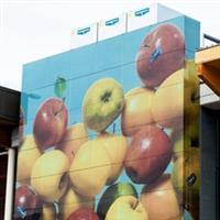 艺术玻璃幕墙