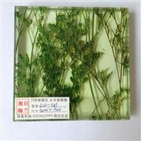 植物夹胶玻璃zw-021旭日梅兰湿法夹胶玻璃