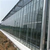 大棚园艺玻璃供应厂家
