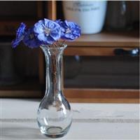 简约风格透明玻璃花瓶细颈花瓶