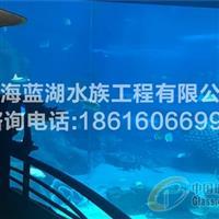 海洋馆市场分析/海洋馆设计