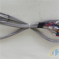 供应热电阻WZP PT100