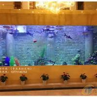 客厅进口鱼缸