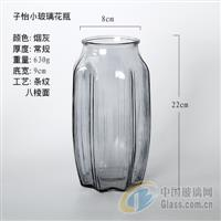 玻璃花瓶桌面装饰瓶