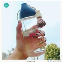 高品质玻璃瓶提手杯