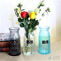 创意玻璃花瓶桌面装饰瓶插花瓶