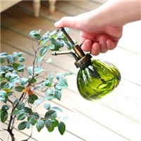 上海玻璃瓶供应风信子玻璃瓶,玻璃喷洒壶