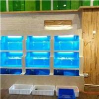 广州二沙岛哪里定做生鲜店海鲜玻璃鱼池