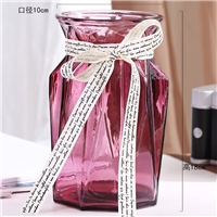 玻璃瓶创意欧式花瓶大号桌面装饰瓶