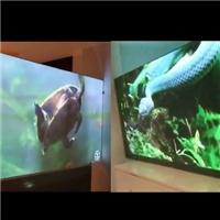 沙河采购-双面投影玻璃