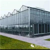 齐齐哈尔采购-5mm钢化玻璃