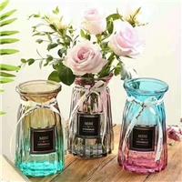 水培植物花瓶小清新透明水培绿萝插花风信子客厅摆件