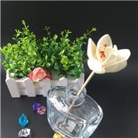 香薰瓶 可裝香薰香水玻璃瓶玻璃香水瓶 可來樣定制
