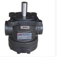VPE-F30-D-10新鸿齿轮泵