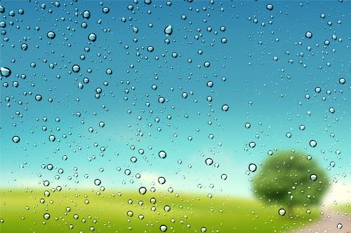 南方地区受梅雨影响,价格走弱