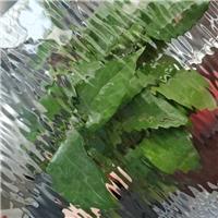 压花玻璃—美国水纹