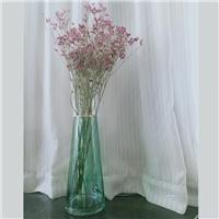 简约圆筒花瓶家居透明威尼斯人注册花瓶超长直筒落地婚庆插花容器水培