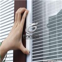 玻璃廠家供應內置中空百葉玻璃 磁控手動鋁百葉玻璃 旋鈕高間隔百葉玻璃