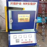 兴强牌8KW痰气保护实验炉