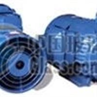 4KW变频电机/武汉精华减速机