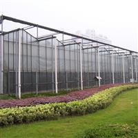 秦皇島溫室玻璃