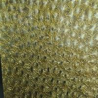 纳米抗氧化压花色镜,东莞市雅港玻璃有限公司,装饰玻璃,发货区:广东 东莞 东莞市,有效期至:2020-03-25, 最小起订:100,产品型号: