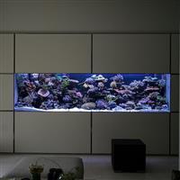西安魚缸/西安定做魚缸/定做海水珊瑚魚缸(A型-01)