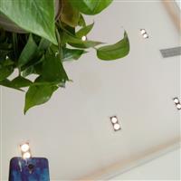 成都 (辨認室)專項使用單向透過玻璃/單面鏡