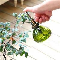 上海玻璃瓶供應風信子玻璃瓶,玻璃噴灑壺