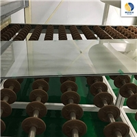 干法夹胶玻璃材料国产SGP胶片