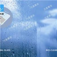 自洁玻璃价格/江苏徐州自洁玻璃