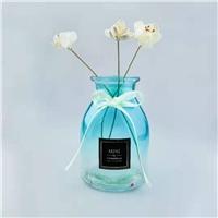 时尚优质现代玻璃花瓶水培插花海蓝色植物瓶干花瓶