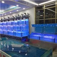 中山市定做餐厅海鲜池,小榄大排档鱼池尺寸