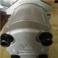 新鸿HGP-2A-L11R齿轮油泵