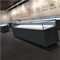 四川博物館恒濕展柜定制 文物展柜供應基地