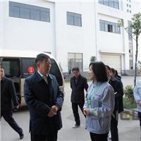 王诚市长一行莅临精菱调研指导工作