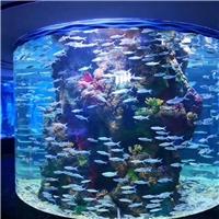 四川玻璃鱼缸定做海洋馆玻璃生产