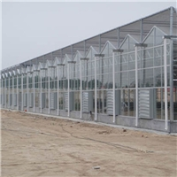 玻璃温室 智能玻璃温室 玻璃智能温室大棚 青州东阳  设计安装玻璃温室大棚