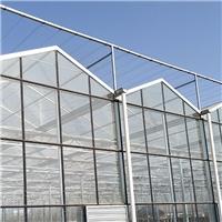 玻璃温室大棚 搭建花卉玻璃温室大棚 农业种植玻璃温室大棚