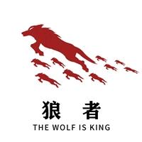 河北狼者之道科技有限公司