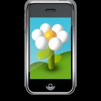 供应2mm手机专项使用钢化玻璃