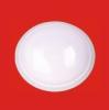 11寸吸顶灯玻璃罩